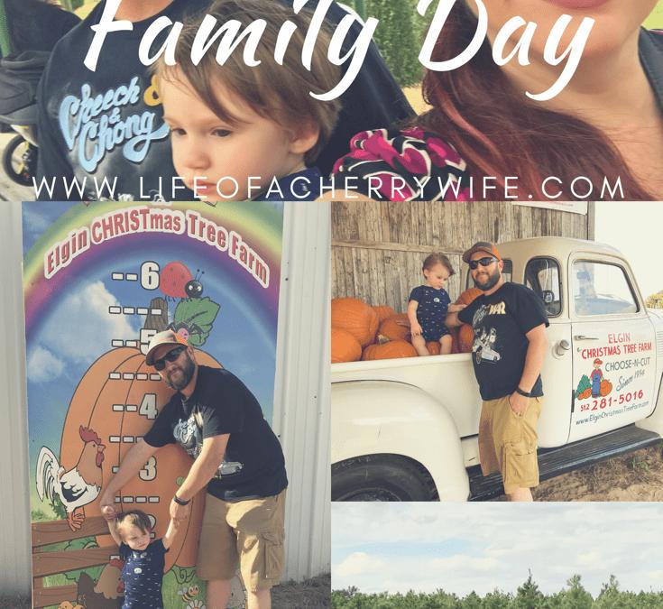 Elgin Christmas Tree Farm.Family Day Pumpkin Fest Elgin Christmas Tree Farm Life